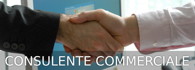 Consulente Commerciale